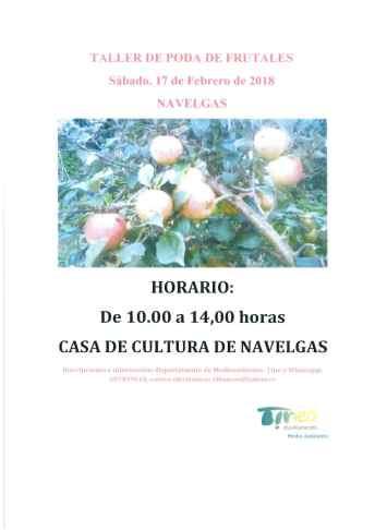 Taller de Poda de frutales en Navelgas