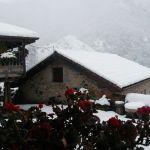 Nieve en Pineda, Somiedo