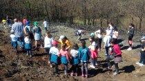 20180425 plantacion arboles colegio berducedo10