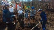 20180425 plantacion arboles colegio berducedo13