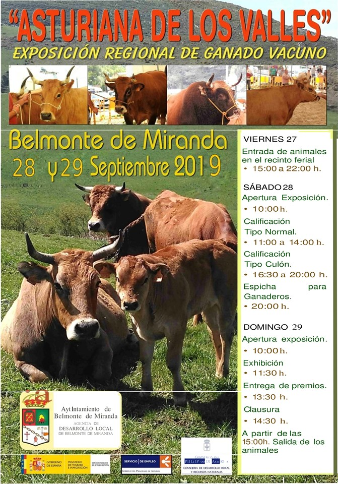 Exposición regional 'Asturiana de los Valles', en Belmonte 1