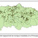 Más de 6.650 reinas capturadas en el trampeo de primavera de avispa asiática