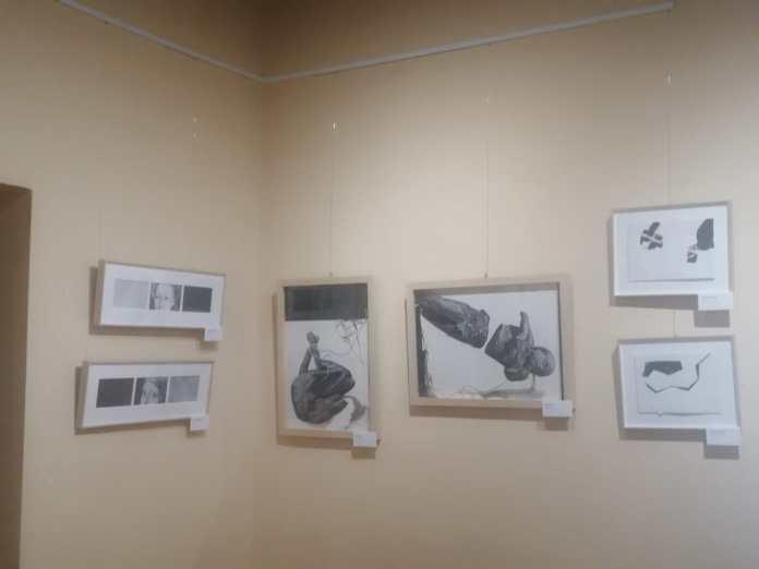 Exposición 'El arte del dibujo' en Cangas del Narcea 1