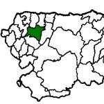 Boal COVID19