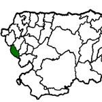 Santa Eulalia de Oscos COVID19