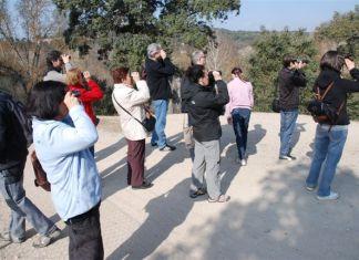 Itinerarios ornitológicos guiados en Madrid