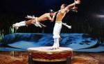 El Cirque du Soleil Totem