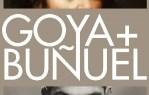 Goya y Buñuel en el Museo Lázaro Galiano