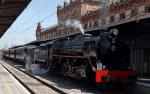 tren de la fresa 2019