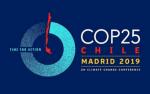 cumbre clima, cumbre clima madrid, cumbre clima ifema, cumbre clima chile y madrid
