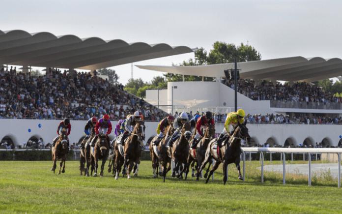 hipodromo madrid, hipodromo de la zarzuela, carreras de caballos madrid
