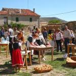 Fiestas El Manzano 2016