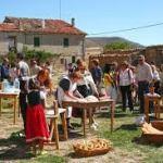 Programa Fiestas el Manzano 2017