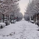 Nieva en la capital charra