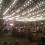 Fiestas del pueblo los Santos Agosto 2018