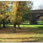 Tiempo en Salamanca Puente Noviembre 2018