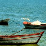 Seis praias de São Pedro da Aldeia estão recomendadas para o banho