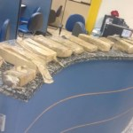 AÇÕES POLICIAIS – PM apreende 20 Kg de maconha enterrados em Cabo Frio