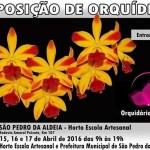 EVENTO – Horto Escola Artesanal realiza exposição de orquídeas