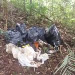 SÃO PEDRO DA ALDEIA – Cerca de 100 kg de lixo é coletado em ação ambiental na Serra de Sapiatiba