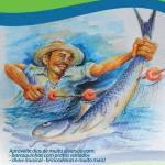 EVENTO – Festival do Peixe da Baleia será realizado nos dias 2 e 3 de julho