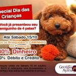 PROMOÇÃO – O Centro de Estética Canina Georgia Ayres está em promoção, todos os BRINQUEDOS E CAMINHAS com um desconto especial