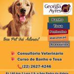 Tudo que seu Pet precisa você encontra no Centro de Estética Georgia Ayres
