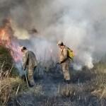 INCÊNDIO – Bombeiros combatem quatro focos de incêndio em Armação dos Búzios