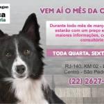 Georgia Ayres Centro de Estética Canina – Vem aí o Mês da Castração