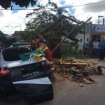 ACIDENTE – Viatura da Polícia Civil bate em ponto de ônibus na RJ-124; delegada, inspetor e outras duas pessoas ficaram feridas