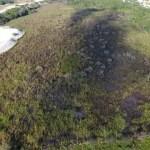 CABO FRIO – Área de preservação ambiental atingida por incêndio é vistoriada em Cabo Frio