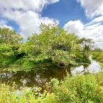 Polo Rural receberá plantio de 12 mil mudas de espécies nativas em São Pedro da Aldeia