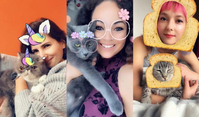 Snpachat gatos - Snapchat lança filtros para gatos