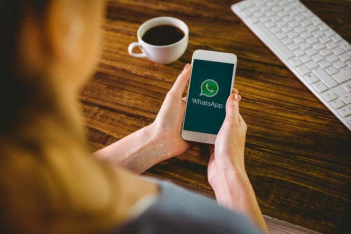 WhatsApp messages given terms WhatsApp for Android