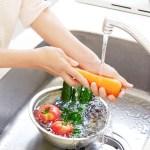 ¿Qué es la sanidad e higiene en la alimentación?