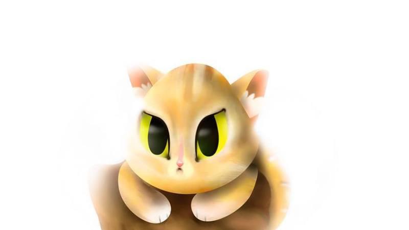 Mi amigo el gato