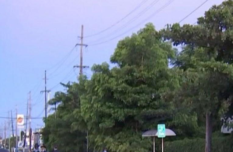 Muere una mujer atropellada en Río Piedras y conductor abandona la escena