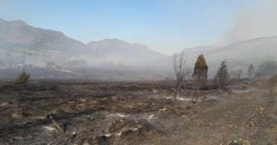 Controlan al 95% incendio forestal en Arteaga