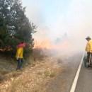Controlado el 40% del incendio en Sierra de Arteaga; van ya 800 hectáreas consumidas
