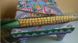 Inicia Festival de la Milpa en Coapan
