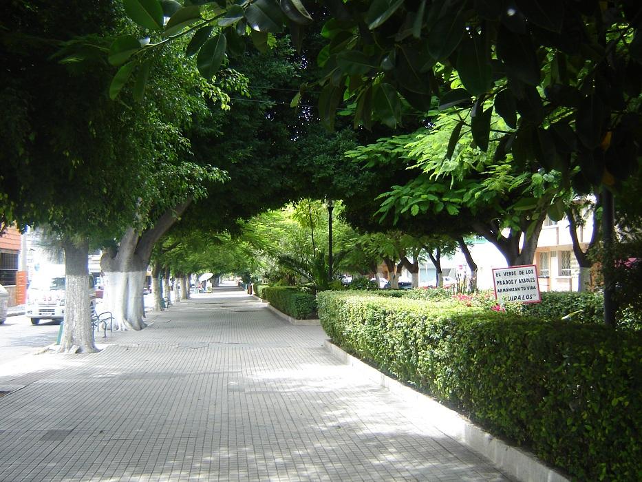 Necesario renovar parque vehicular de servicios municipales