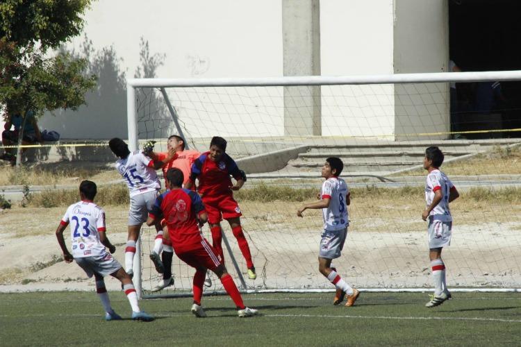 Guerreos Tehuacán 3a. División Profesional