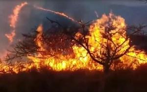 Se registra incendio en el Bosque de la Soledad