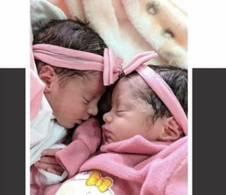 Tragédia: Recém-nascidas gêmeas morrem após serem atacadas por cachorro da família