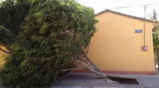 Frente frío número 21 provoca vientos intensos en el Istmo de Tehuantepec