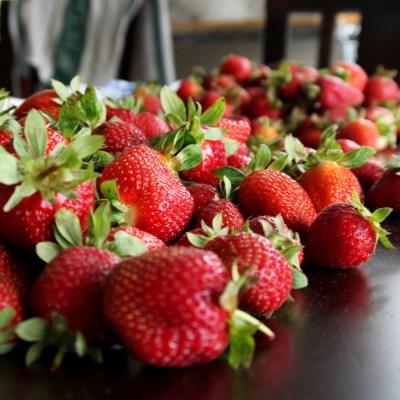 Michoacano vende tonelada de fresas rechazadas de EU gracias a mensaje viral