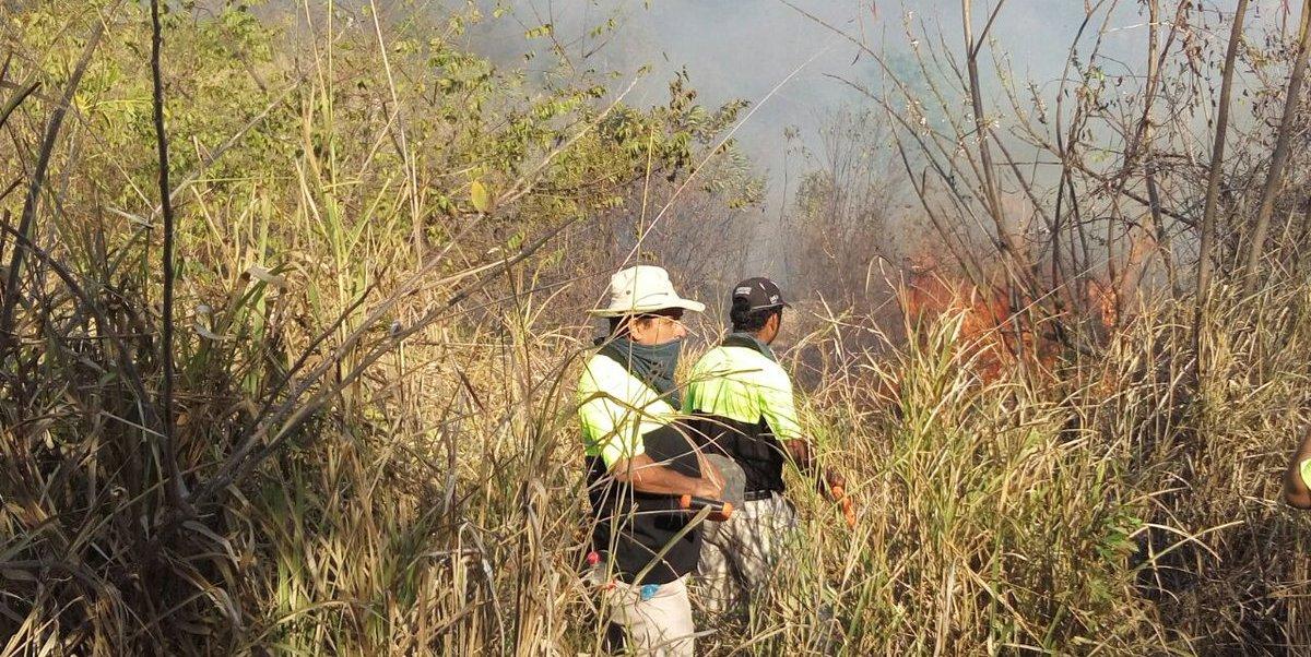 El incendio forestal devastó la flora y fauna de el Parque Nacional El Veladero