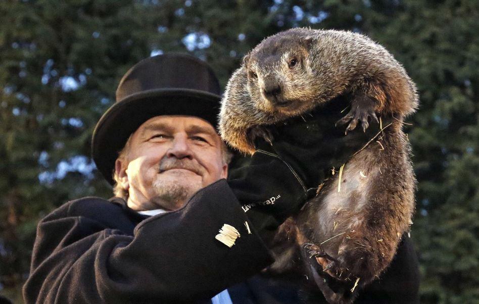 La marmota Phil de Pennsylvania