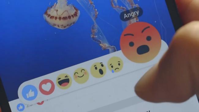 Reacciones en Facebook cumplen un año.