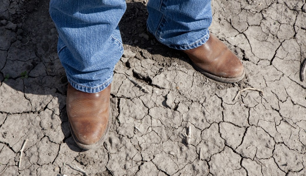 Más de 250 colonias de la capital padece sequías y se abastecen de otras fuentes como pozos profundos que se están secando. (Getty Images/archivo)